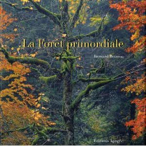 foret-primordiale